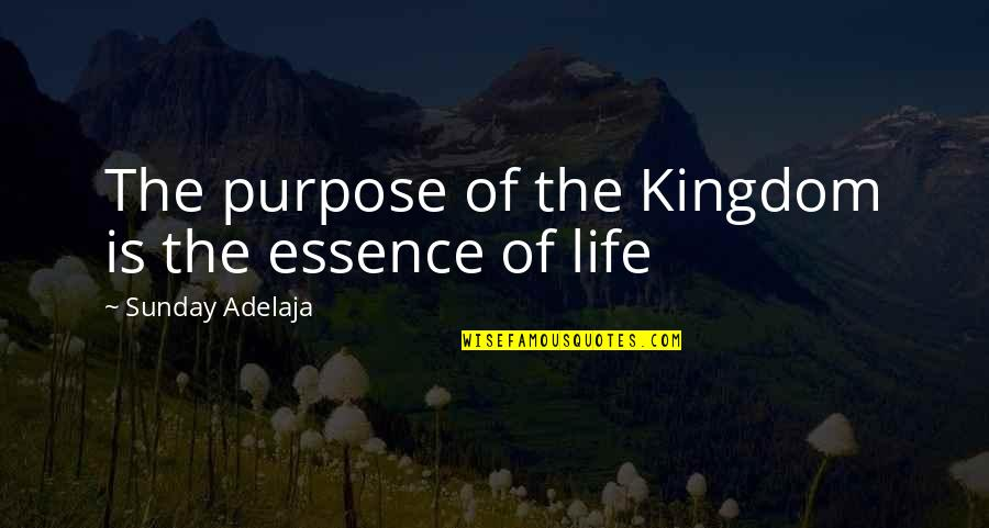 Principles Of Life Quotes By Sunday Adelaja: The purpose of the Kingdom is the essence