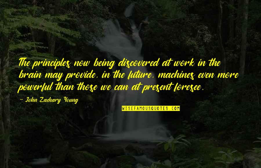 Principles Quotes By John Zachary Young: The principles now being discovered at work in