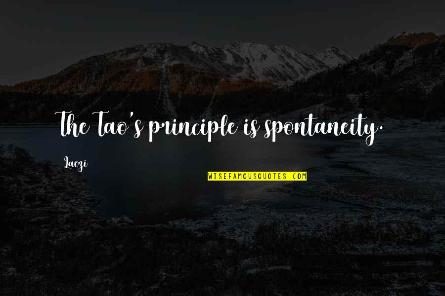Principles Quotes By Laozi: The Tao's principle is spontaneity.