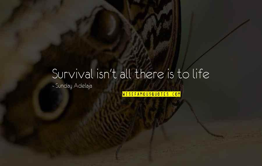 Principles Quotes By Sunday Adelaja: Survival isn't all there is to life