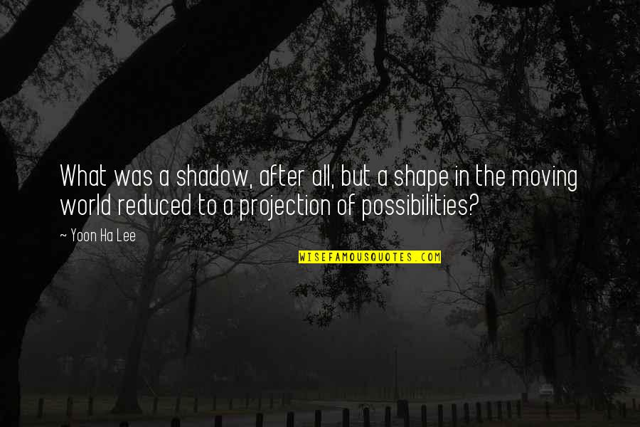 Probability Vs Possibility Quotes By Yoon Ha Lee: What was a shadow, after all, but a