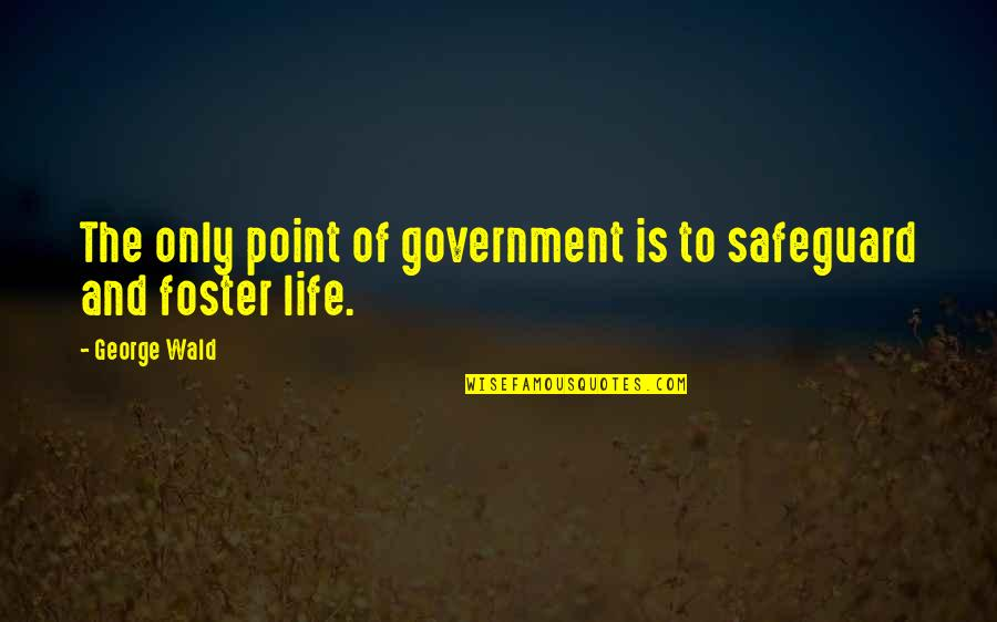 Problematic Friends Quotes By George Wald: The only point of government is to safeguard