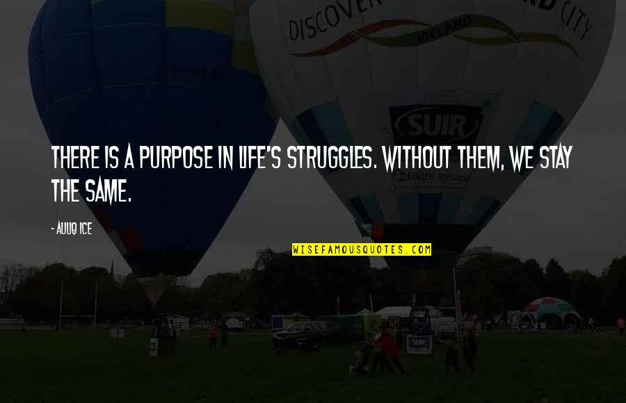 Problems And Struggles Quotes By Auliq Ice: There is a purpose in life's struggles. Without