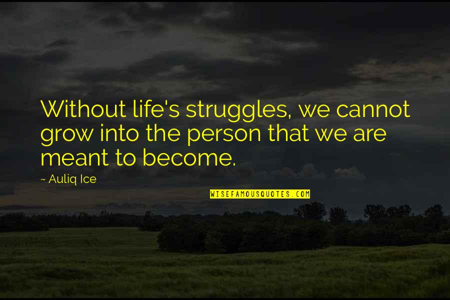 Problems And Struggles Quotes By Auliq Ice: Without life's struggles, we cannot grow into the