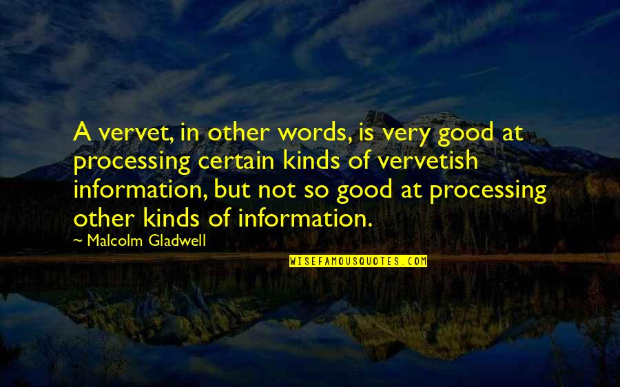 Processing Information Quotes By Malcolm Gladwell: A vervet, in other words, is very good