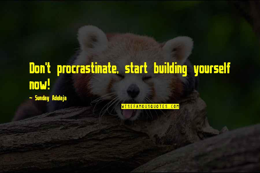 Procrastination At Work Quotes By Sunday Adelaja: Don't procrastinate, start building yourself now!