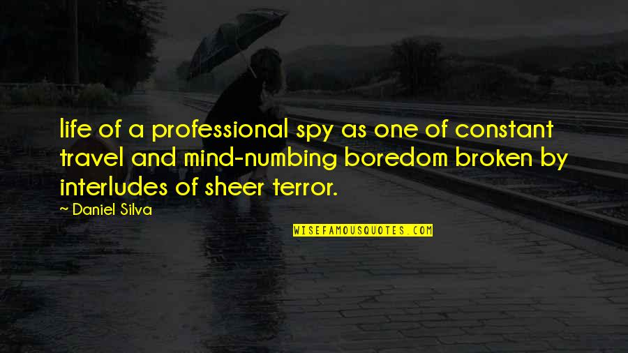 Professional Life Quotes By Daniel Silva: life of a professional spy as one of