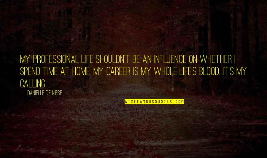 Professional Life Quotes By Danielle De Niese: My professional life shouldn't be an influence on