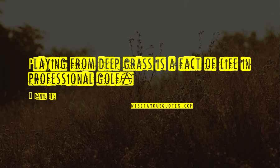 Professional Life Quotes By Ernie Els: Playing from deep grass is a fact of