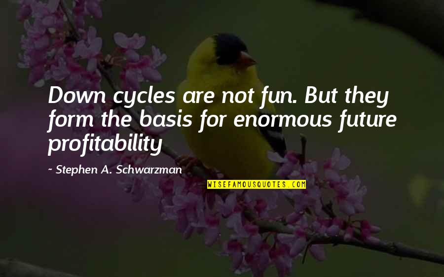 Profitability Quotes By Stephen A. Schwarzman: Down cycles are not fun. But they form