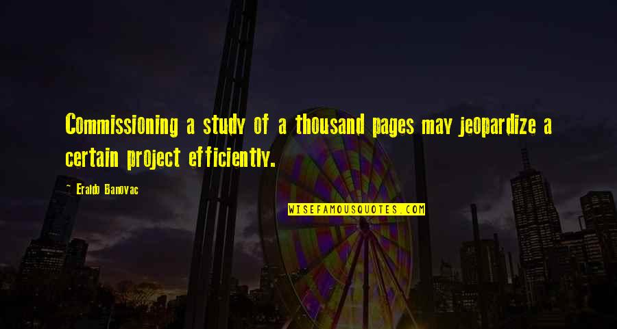 Project Inspirational Quotes By Eraldo Banovac: Commissioning a study of a thousand pages may