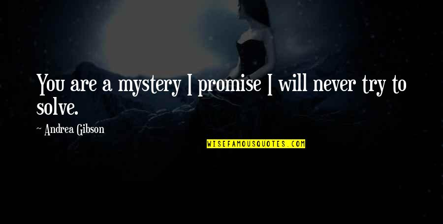 Promise To You Quotes By Andrea Gibson: You are a mystery I promise I will