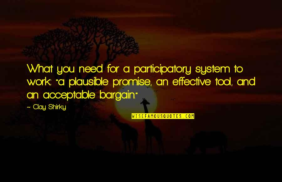 Promise To You Quotes By Clay Shirky: What you need for a participatory system to