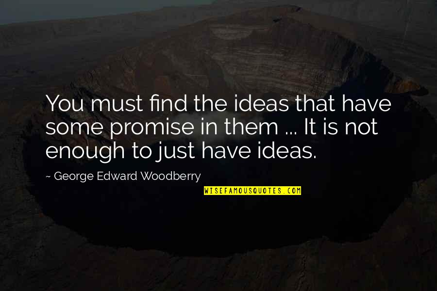 Promise To You Quotes By George Edward Woodberry: You must find the ideas that have some