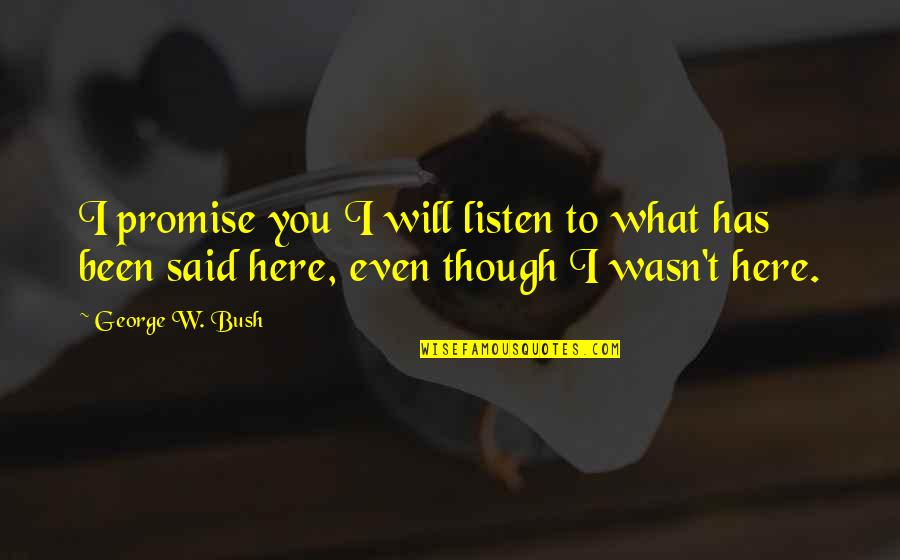 Promise To You Quotes By George W. Bush: I promise you I will listen to what