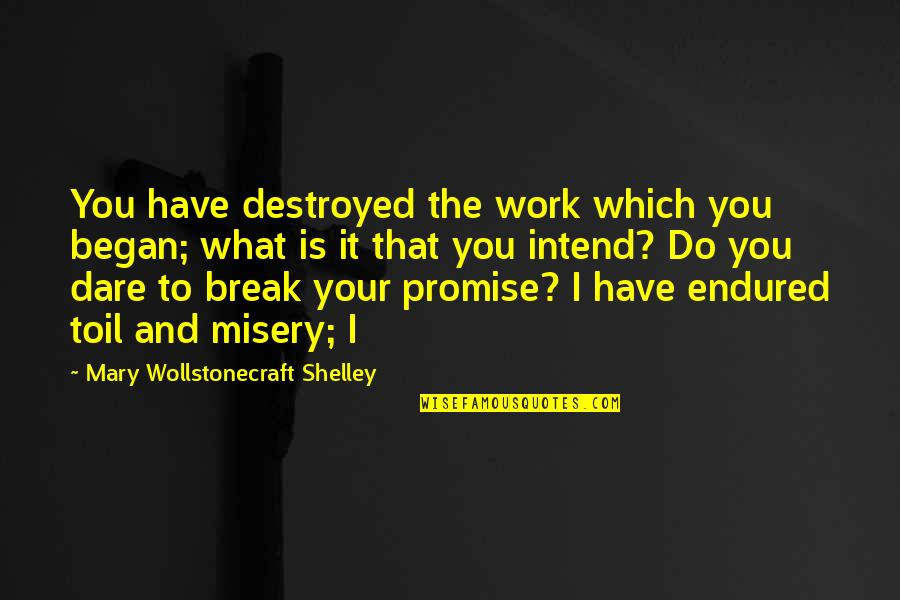 Promise To You Quotes By Mary Wollstonecraft Shelley: You have destroyed the work which you began;