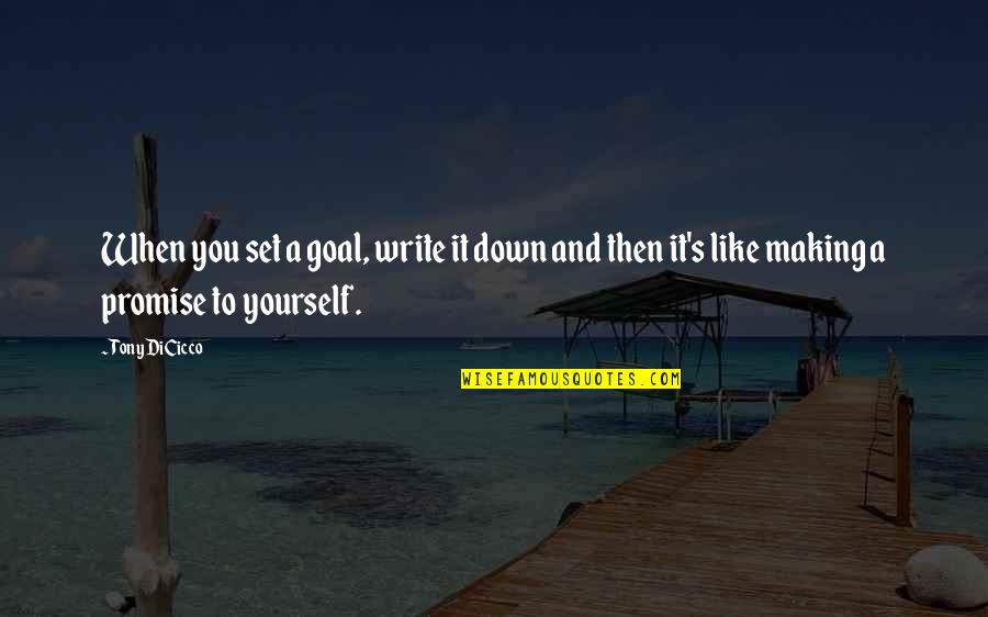 Promise To You Quotes By Tony DiCicco: When you set a goal, write it down