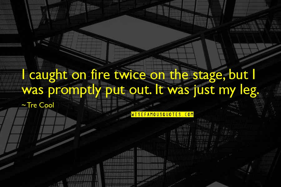 Promptly Quotes By Tre Cool: I caught on fire twice on the stage,