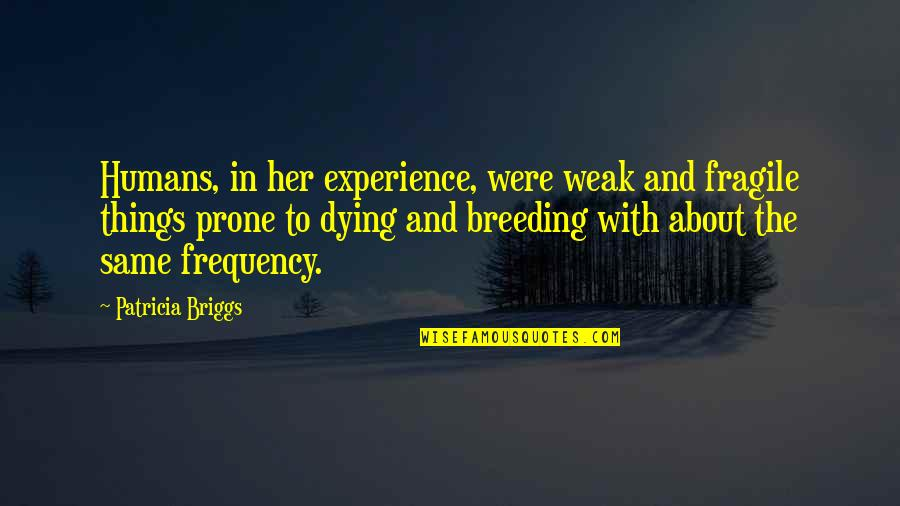 Prone Quotes By Patricia Briggs: Humans, in her experience, were weak and fragile
