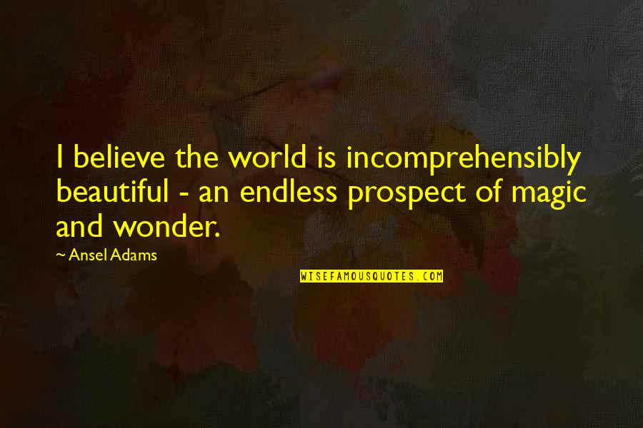 Prospect Quotes By Ansel Adams: I believe the world is incomprehensibly beautiful -