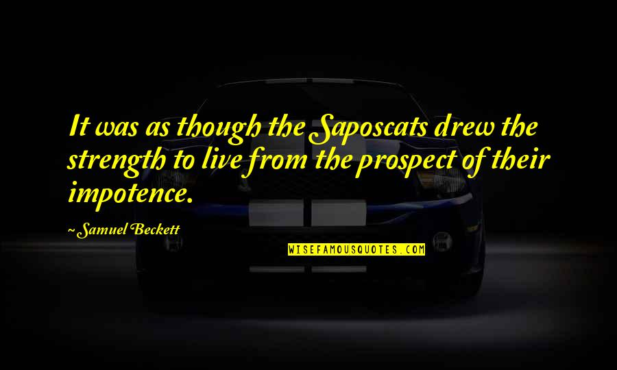 Prospect Quotes By Samuel Beckett: It was as though the Saposcats drew the