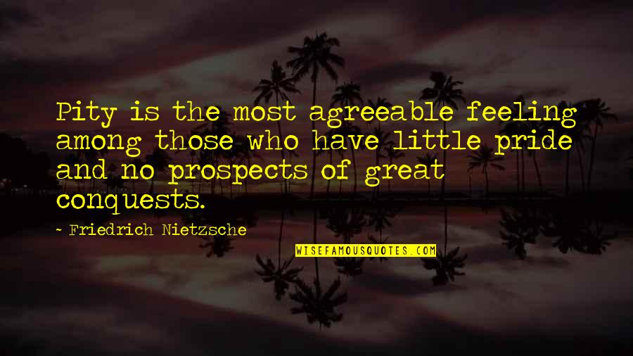 Prospects Quotes By Friedrich Nietzsche: Pity is the most agreeable feeling among those