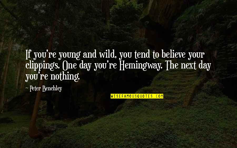 Prosumer Quotes By Peter Benchley: If you're young and wild, you tend to