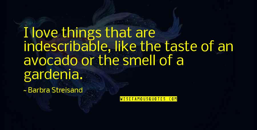 Protect My Child Quotes By Barbra Streisand: I love things that are indescribable, like the