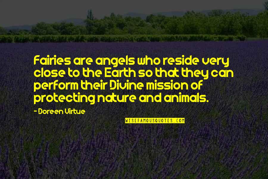 Protecting Animals Quotes By Doreen Virtue: Fairies are angels who reside very close to