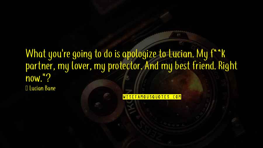 Protector Quotes By Lucian Bane: What you're going to do is apologize to