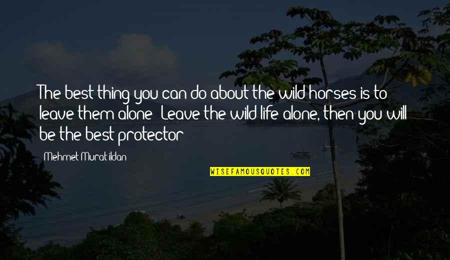 Protector Quotes By Mehmet Murat Ildan: The best thing you can do about the