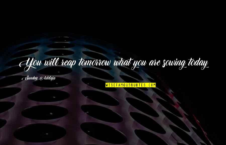 Proverbs 31 Woman Quotes By Sunday Adelaja: You will reap tomorrow what you are sowing