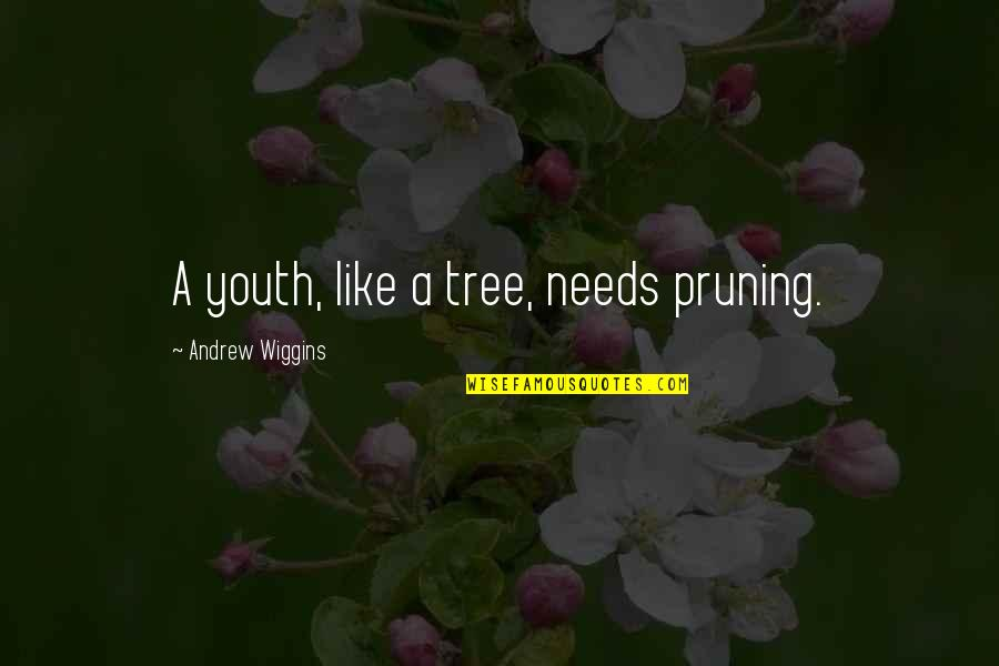 Pruning Quotes By Andrew Wiggins: A youth, like a tree, needs pruning.