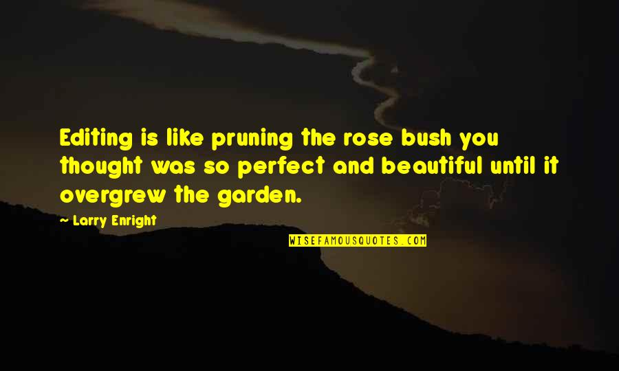 Pruning Quotes By Larry Enright: Editing is like pruning the rose bush you