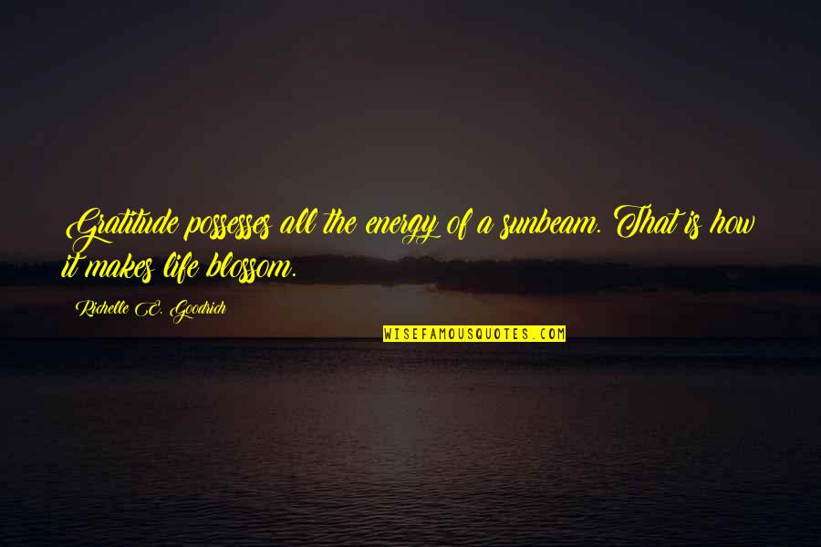 Psychokinesis Quotes By Richelle E. Goodrich: Gratitude possesses all the energy of a sunbeam.