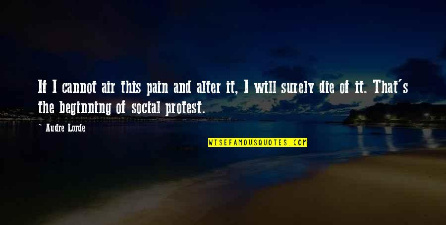 Pudency Quotes By Audre Lorde: If I cannot air this pain and alter