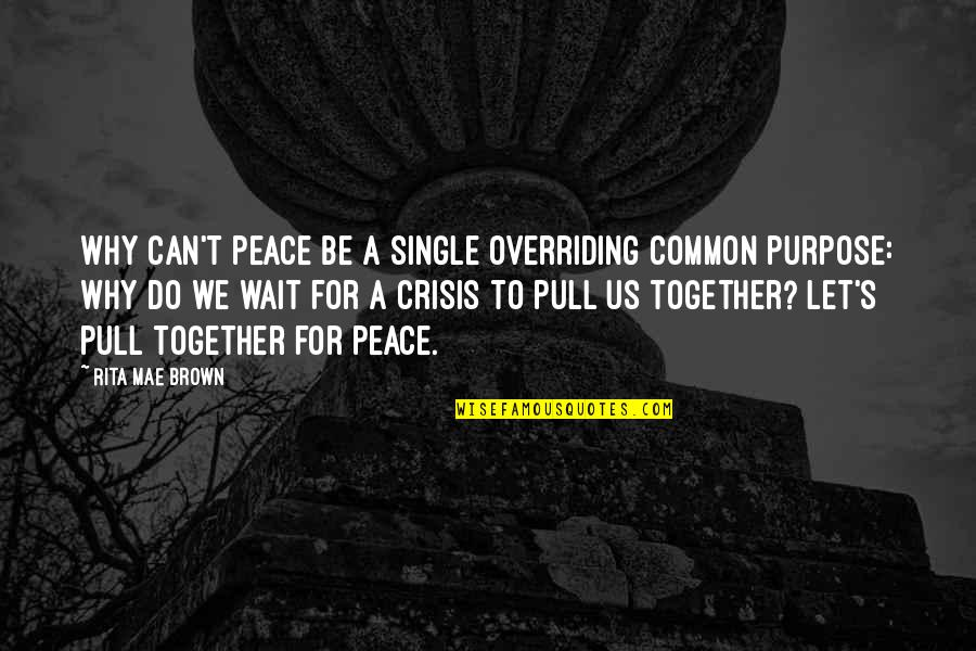 Pull Together Quotes By Rita Mae Brown: Why can't peace be a single overriding common