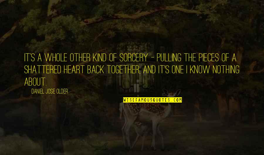 Pulling Back Quotes By Daniel Jose Older: It's a whole other kind of sorcery -