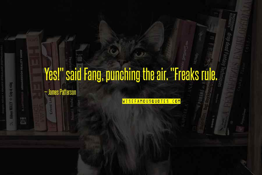 """Punching Quotes By James Patterson: Yes!"""" said Fang, punching the air. """"Freaks rule."""