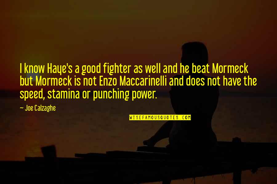 Punching Quotes By Joe Calzaghe: I know Haye's a good fighter as well