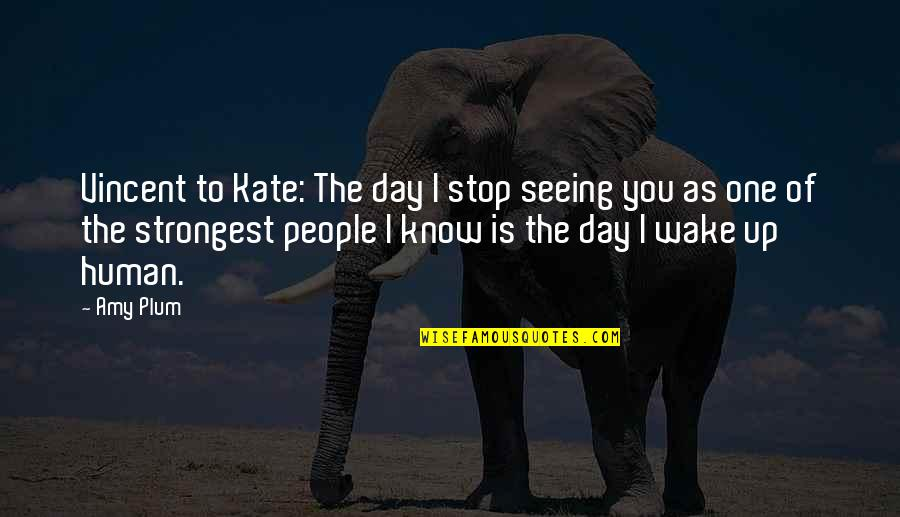 Punjabi Font Written Quotes By Amy Plum: Vincent to Kate: The day I stop seeing