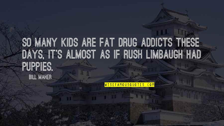 Puppies Quotes By Bill Maher: So many kids are fat drug addicts these