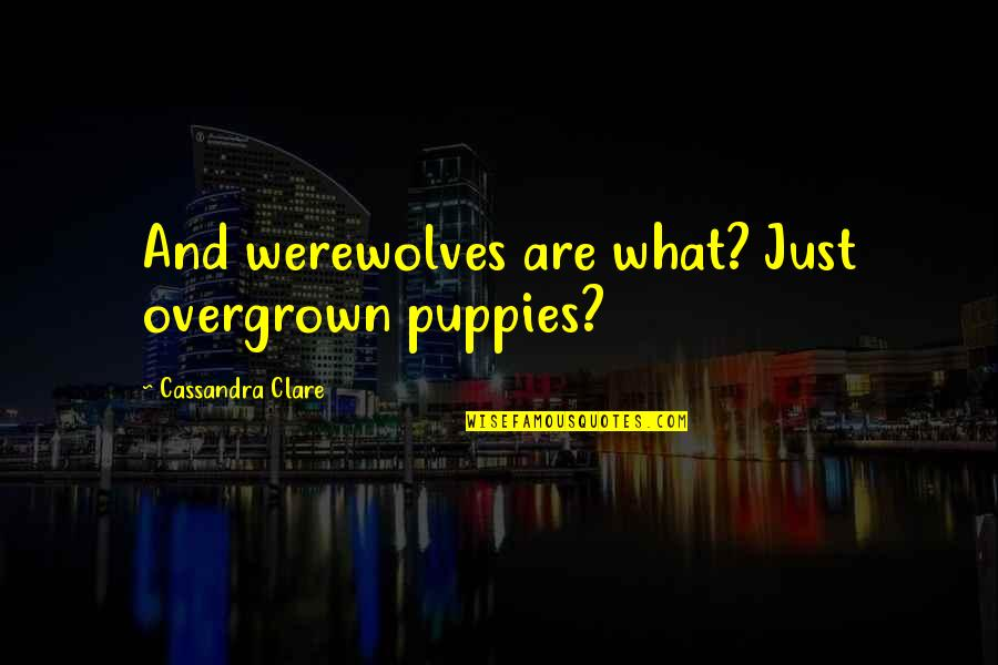 Puppies Quotes By Cassandra Clare: And werewolves are what? Just overgrown puppies?
