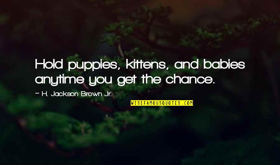 Puppies Quotes By H. Jackson Brown Jr.: Hold puppies, kittens, and babies anytime you get
