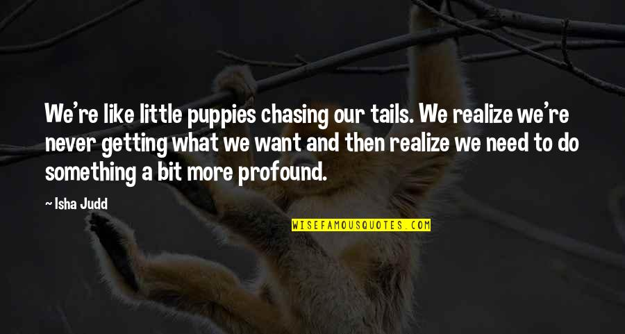 Puppies Quotes By Isha Judd: We're like little puppies chasing our tails. We