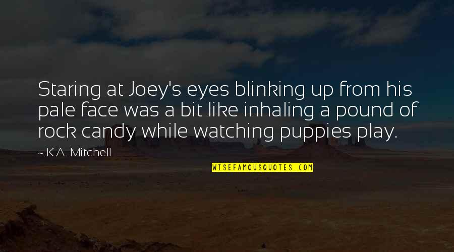 Puppies Quotes By K.A. Mitchell: Staring at Joey's eyes blinking up from his