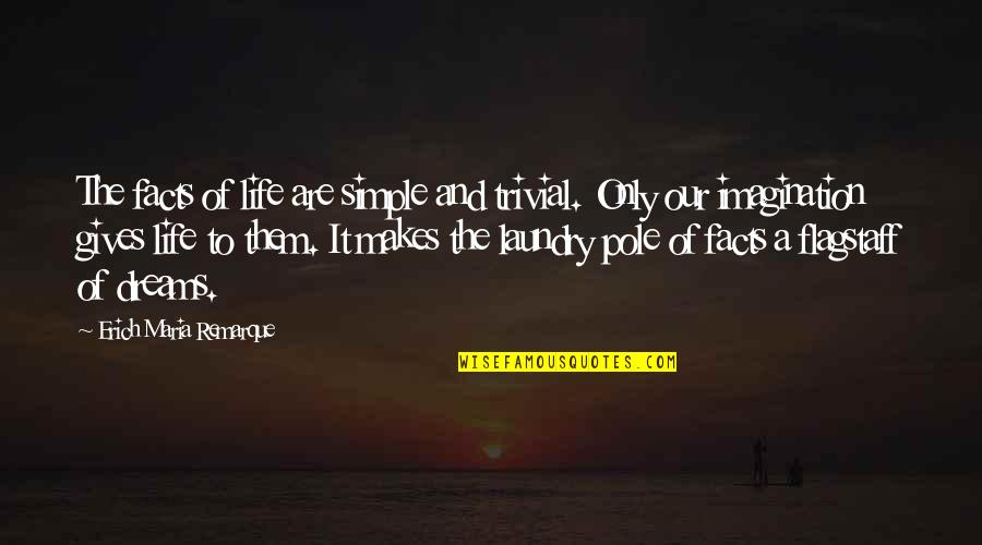 Purge Famous Quotes By Erich Maria Remarque: The facts of life are simple and trivial.