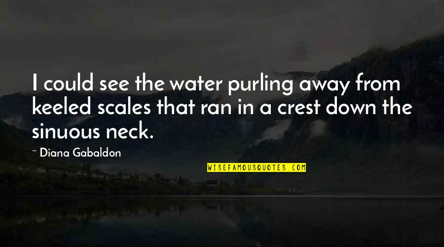 Purling Quotes By Diana Gabaldon: I could see the water purling away from