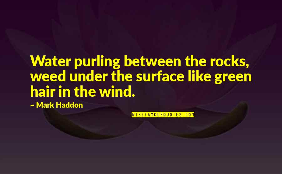 Purling Quotes By Mark Haddon: Water purling between the rocks, weed under the