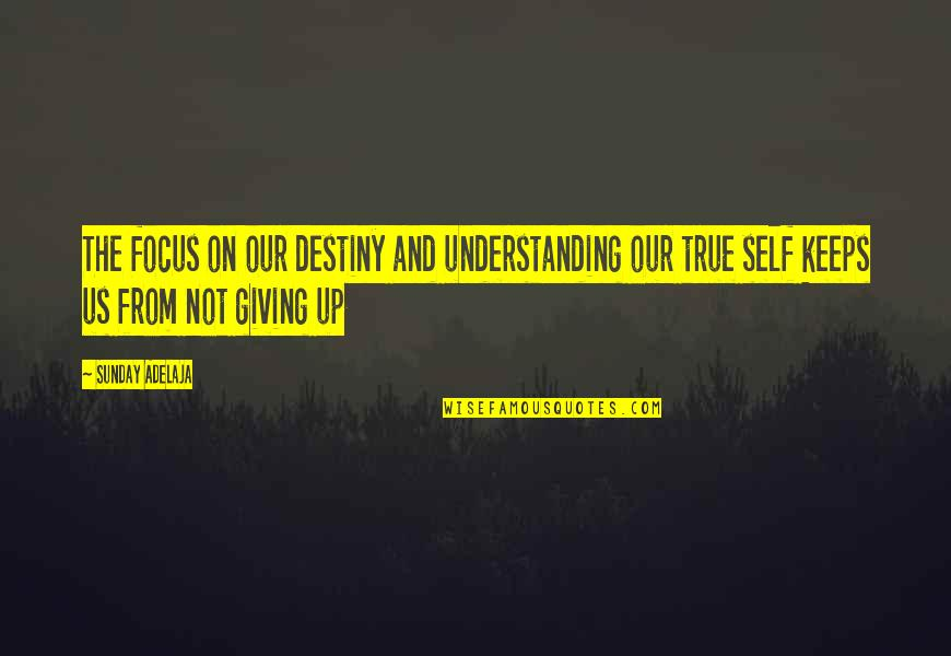 Purpose And Destiny Quotes By Sunday Adelaja: The focus on our destiny and understanding our